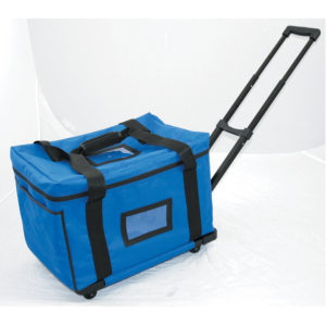 Ballot-Collection-Bag-for-use-with-DS200